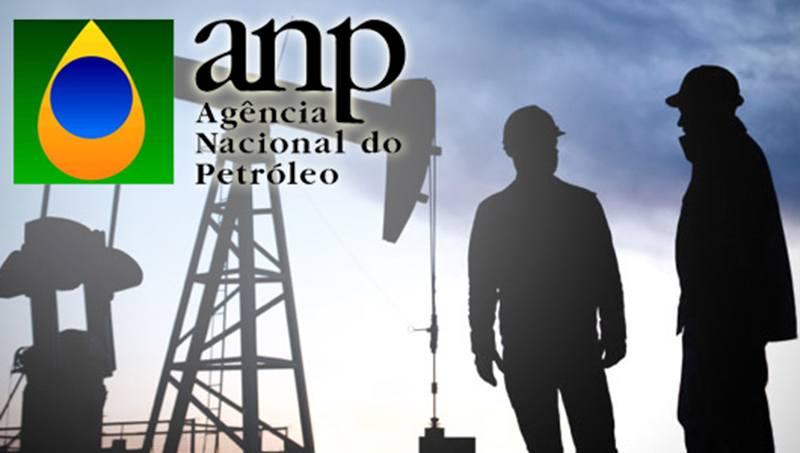 O que é ANP?